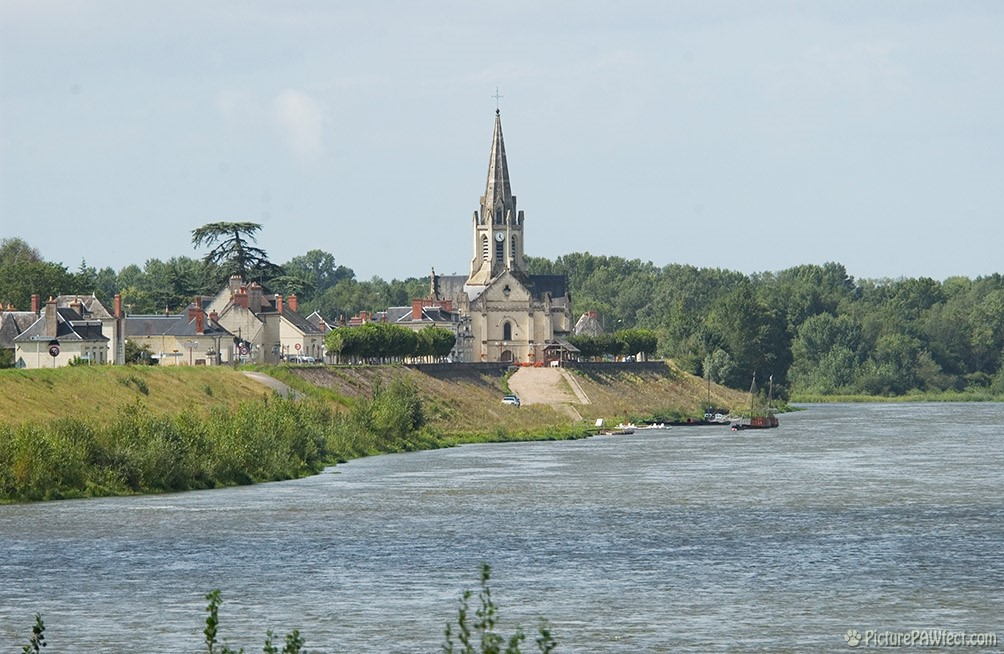 View from Châteauof the sleepy town of Langeais (David's France Gallery)