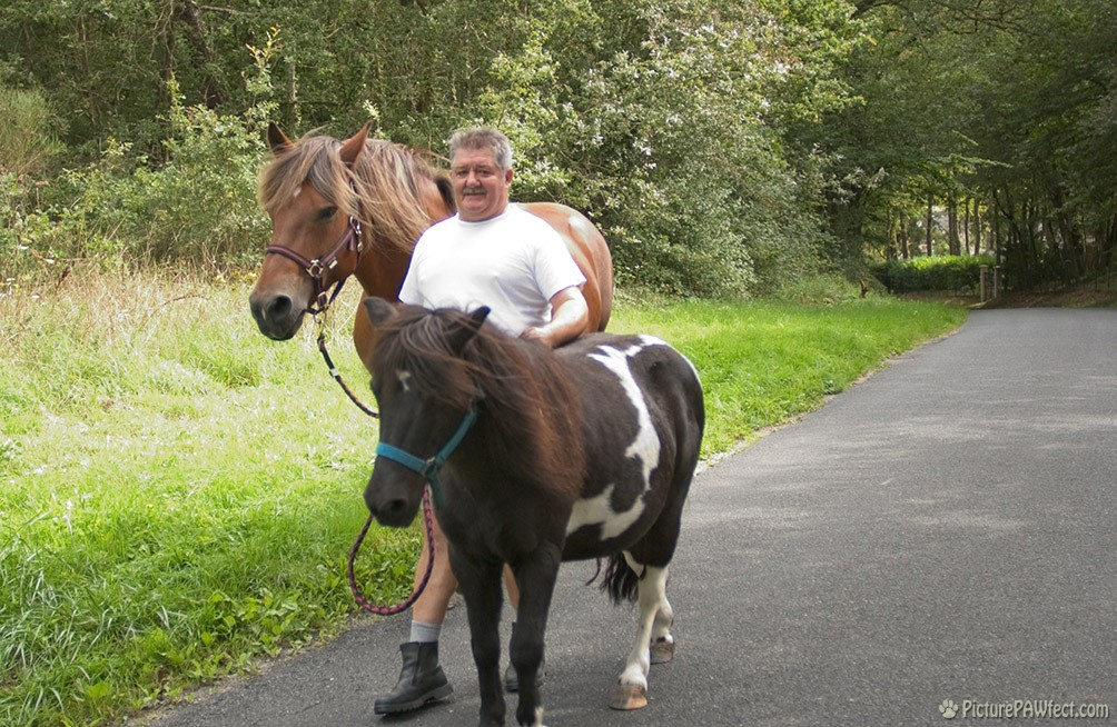 We saw this classic Frenchman walking his horses down a country road (David's France Gallery)