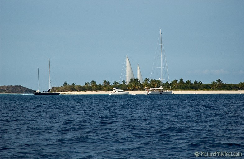 A small, sandy, reef island (with big sails!) (Sailing the British Virgin Islands)