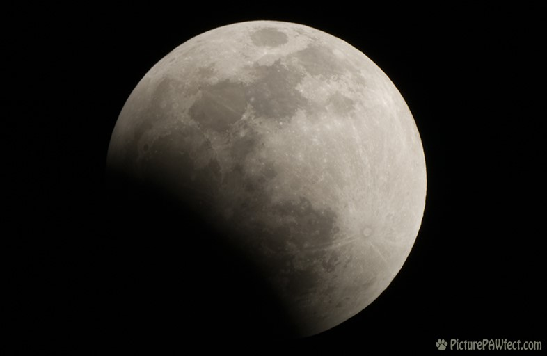 Lunar Eclipse of August 28, 2007 (Sky & Space Gallery)