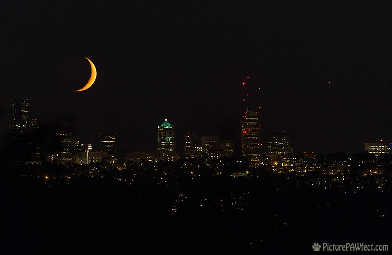 Moon and Venus over Seattle (300mm) (Sky & Space Gallery)